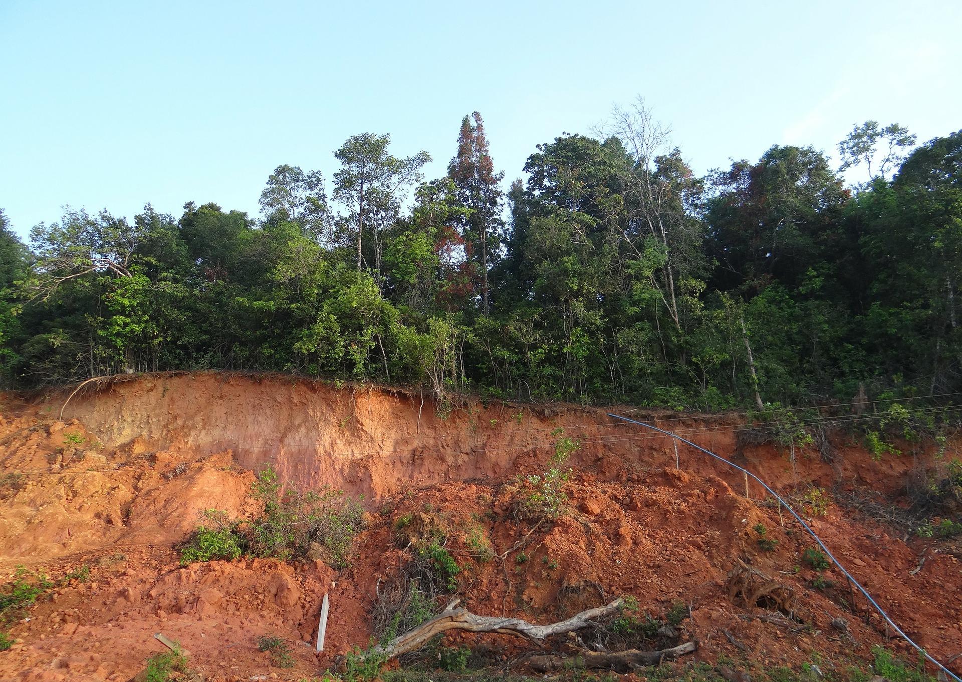 Glissement de terrain au Japon : Les secouristes cherchent les survivants